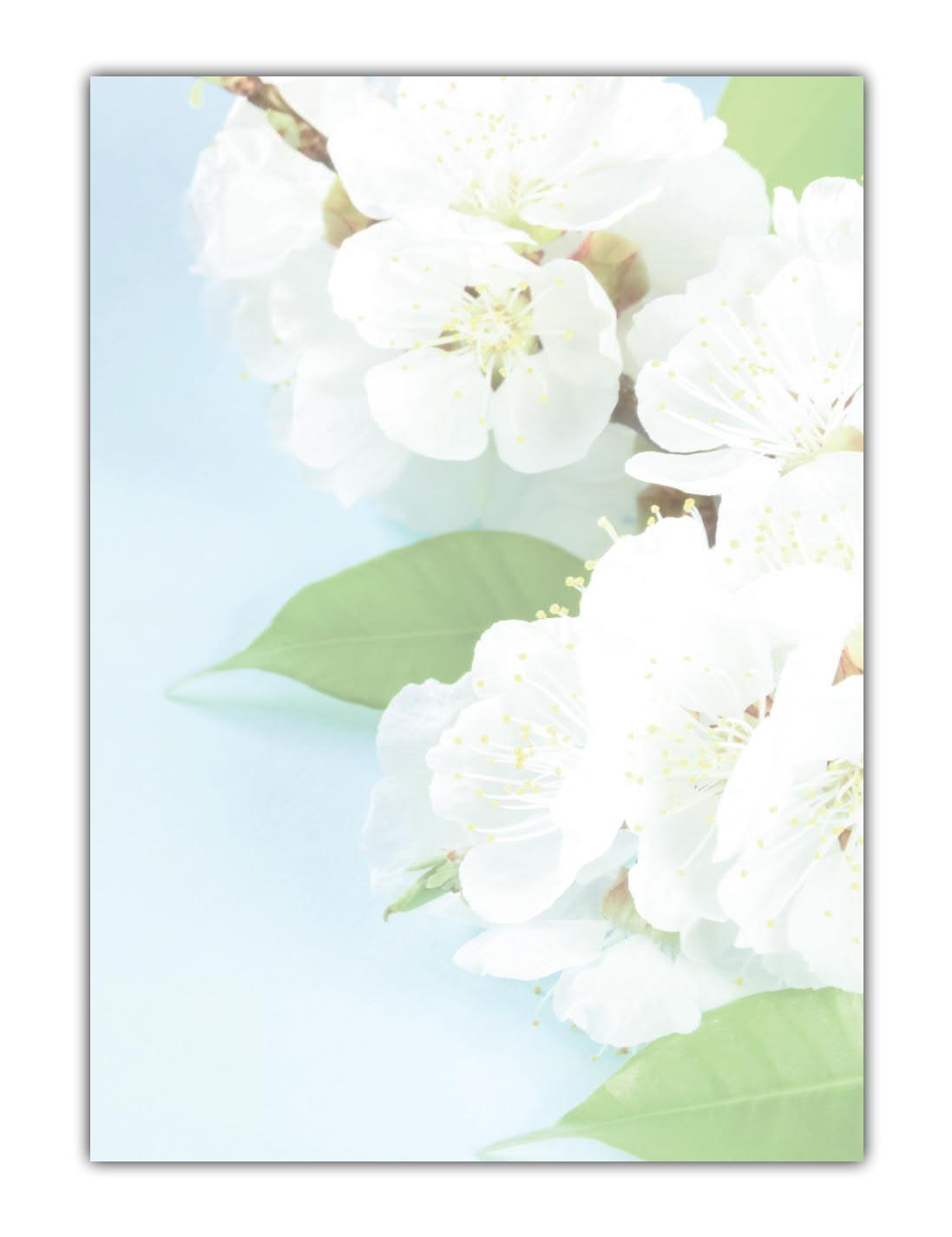 Blumen Motivpapier Briefpapier Aprikosenblüten (MPA-5211, DIN A4, 100 Blatt)