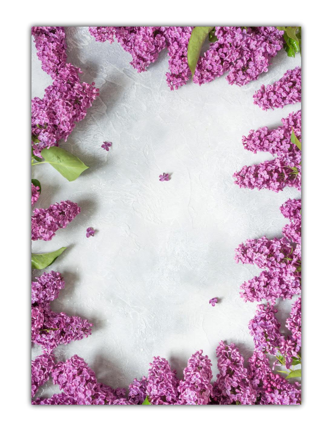 Motivpapier Briefpapier Blumen Blüten Flieder violett (MPA-5214, DIN A4, 100 Blatt)